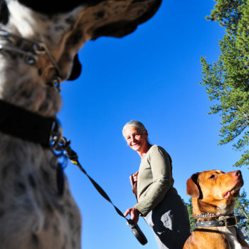 Animal Chiropractor-St. Peter, MN-Walking dogs and neck pain-Rising Sun Chiropractic